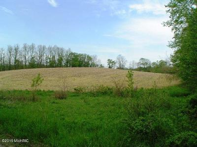 Ionia County Residential Lots & Land For Sale: 4315 Sayles Parcel B Road