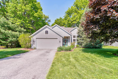 Holland, West Olive Single Family Home For Sale: 172 Woodwind Drive