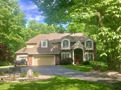 Mattawan Single Family Home For Sale: 7580 Fieldwood Circle