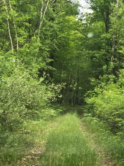 Newaygo Residential Lots & Land For Sale: 8013 E 36th Street