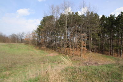 Ionia County Residential Lots & Land For Sale: 1 State Road