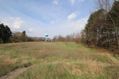 Ionia County Residential Lots & Land For Sale: 2 State Road