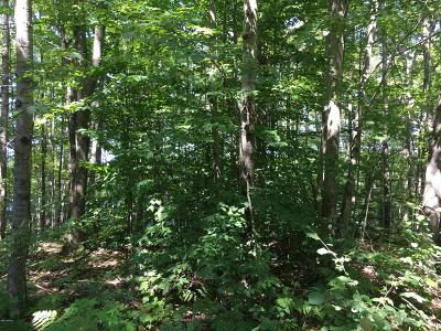 Reed City Residential Lots & Land For Sale: 00 Alpine Drive