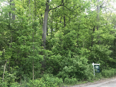 Grand Rapids Residential Lots & Land For Sale: 3829 Kate Avenue SE