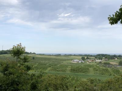 Benzie County, Charlevoix County, Clare County, Emmet County, Grand Traverse County, Kalkaska County, Lake County, Leelanau County, Manistee County, Mason County, Missaukee County, Osceola County, Roscommon County, Wexford County Residential Lots & Land For Sale: Lot V Kerry Road