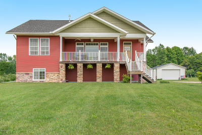 Paw Paw Single Family Home For Sale: 34905 M 40