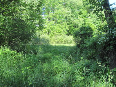 Gobles Residential Lots & Land For Sale: 21311 Paulson Road