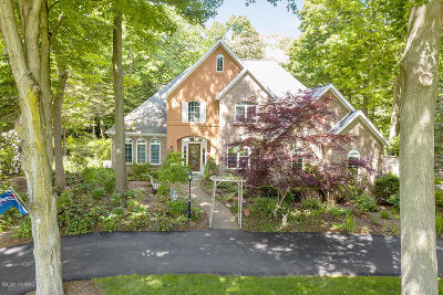 Saugatuck, Douglas Single Family Home For Sale: 20 Wilderness Ridge Drive