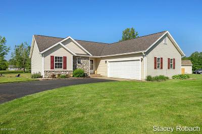 Rockford Single Family Home For Sale: 9481 Stone View Drive NE