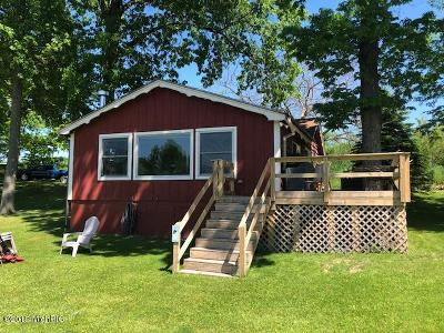 Irons Single Family Home For Sale: 5764 N Bass Lake Road
