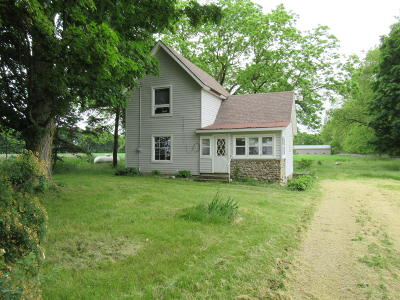 Alto Single Family Home For Sale: 10082 Baker Avenue SE