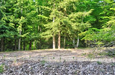 Oceana County Residential Lots & Land For Sale: Lost Canyon Road #5