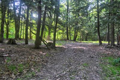 Oceana County Residential Lots & Land For Sale: Lost Canyon Road #4