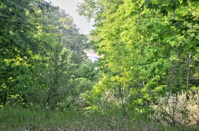 Oceana County Residential Lots & Land For Sale: Lost Canyon Road #3