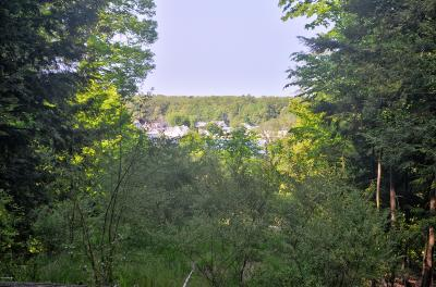 Oceana County Residential Lots & Land For Sale: Lost Canyon Road #2