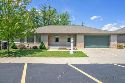 Cedar Springs Single Family Home For Sale: 141 S Main