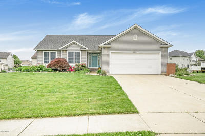 Jenison Single Family Home For Sale: 2492 Willowview Drive