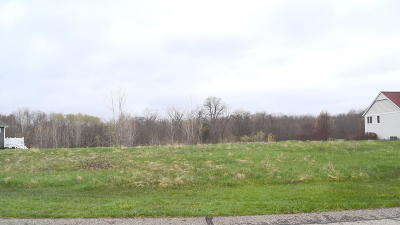 Saugatuck, Douglas Residential Lots & Land For Sale: 3494 Palmer Drive
