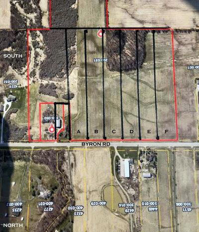 Hudsonville Residential Lots & Land For Sale: Byron Road SW