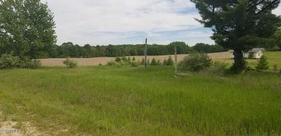 Clinton County, Gratiot County, Isabella County, Kent County, Mecosta County, Montcalm County, Muskegon County, Newaygo County, Oceana County, Ottawa County, Ionia County, Ingham County, Eaton County, Barry County, Allegan County Residential Lots & Land For Sale: 3275 E Winter Road