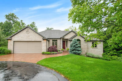 Grand Rapids, East Grand Rapids Single Family Home For Sale: 4301 S Oak Pointe Court NE