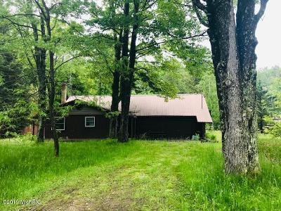 Benzie County, Charlevoix County, Clare County, Emmet County, Grand Traverse County, Kalkaska County, Lake County, Leelanau County, Manistee County, Mason County, Missaukee County, Osceola County, Roscommon County, Wexford County Single Family Home For Sale: 317 E Sauble Drive