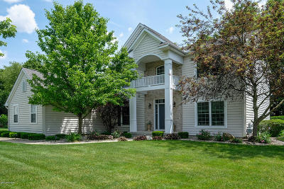 Kalamazoo Single Family Home For Sale: 6513 Belgian Avenue