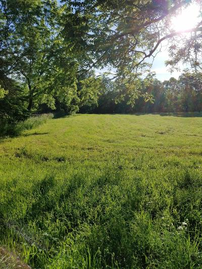 Allegan County Residential Lots & Land For Sale: 867 Riverview Drive