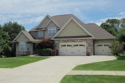 Kalamazoo Single Family Home For Sale: 7923 Interlochen Street