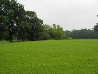 Berrien County, Branch County, Calhoun County, Cass County, Hillsdale County, Jackson County, Kalamazoo County, St. Joseph County, Van Buren County Residential Lots & Land For Sale: 16 - 17 River Heights Road