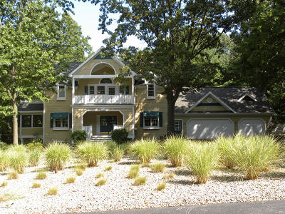 Stevensville Single Family Home For Sale: 3029 Dunes Valley Path