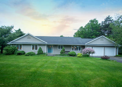 Mecosta County Single Family Home For Sale: 18080 McKinley Road
