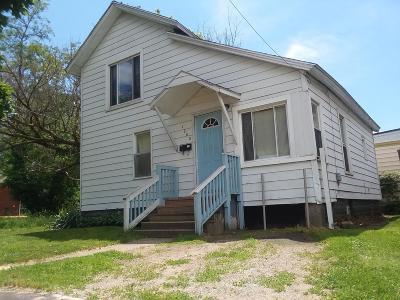 Kalamazoo Single Family Home For Sale: 1008 Bridge Street