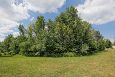 Allegan County Residential Lots & Land For Sale: Highfield Beach #43