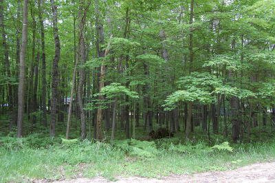 Canadian Lakes Residential Lots & Land For Sale: 12111 Victoria Drive