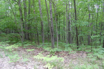 Residential Lots & Land For Sale: 12030 Hudson Bay Road