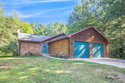 Howard City Single Family Home For Sale: 21594 W Dewey Road