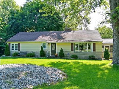 Kalamazoo Single Family Home For Sale: 4319 S 12th Street