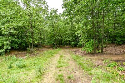 Allegan County Residential Lots & Land For Sale: 4090 Ronalds Road
