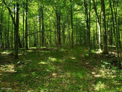 Newaygo Residential Lots & Land For Sale: Newcosta Avenue