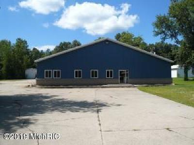 Berrien County Commercial For Sale: 2732 S 3rd Street