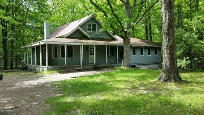 Mecosta County Single Family Home For Sale: 11185 Rambling Way Way