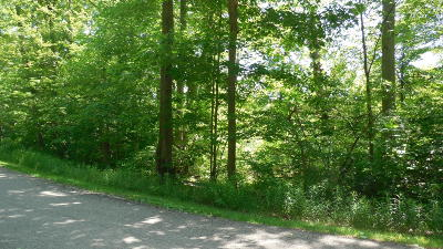 New Buffalo Residential Lots & Land For Sale: 17121 River Bluff #13