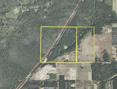 Benzie County, Charlevoix County, Clare County, Emmet County, Grand Traverse County, Kalkaska County, Lake County, Leelanau County, Manistee County, Mason County, Missaukee County, Osceola County, Roscommon County, Wexford County Residential Lots & Land For Sale: 936 Motz Road SW
