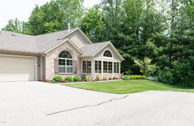 Ottawa County, Kent County Condo/Townhouse For Sale: 5326 Mapleside Lane SW