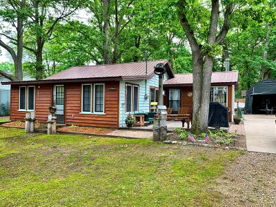 Mecosta MI Single Family Home For Sale: $89,900