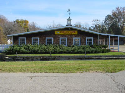 Berrien County Commercial For Sale: 12857 Red Arrow Highway