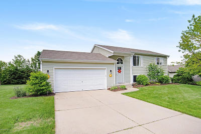 Rockford Single Family Home For Sale: 4139 Whirlwind Drive NE