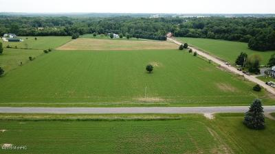 Clinton County, Gratiot County, Isabella County, Kent County, Mecosta County, Montcalm County, Muskegon County, Newaygo County, Oceana County, Ottawa County, Ionia County, Ingham County, Eaton County, Barry County, Allegan County Residential Lots & Land For Sale: Johnson Street