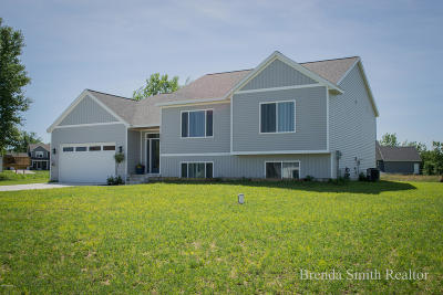 Allendale Single Family Home For Sale: 9084 Meadow's Pointe Drive